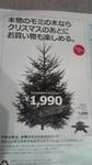 ikeaのモミの木クリスマスツリー.jpg